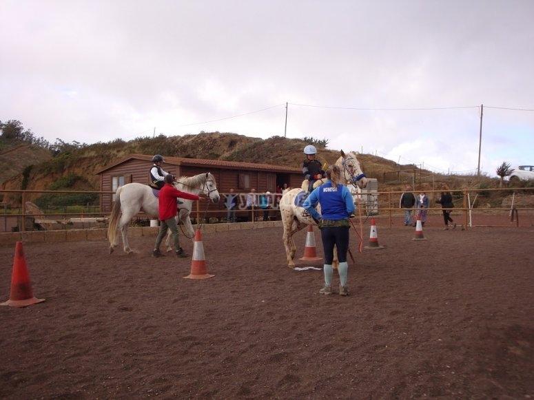 Clase de equitacion en picadero