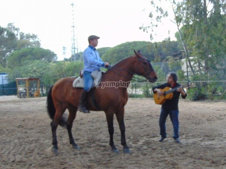 Caballo y guitarra