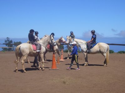 Horse riding camp, La Laguna, Mon-Fri