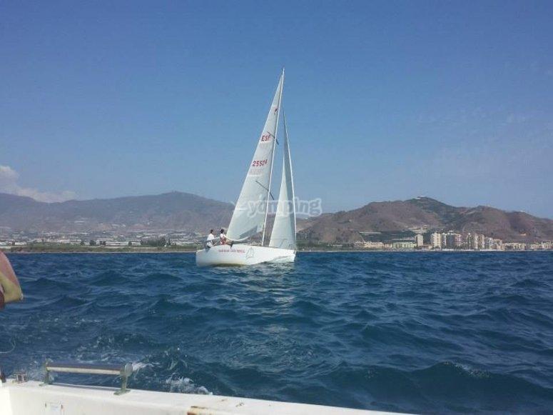 我们美丽的白色帆船
