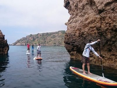 Rent the materials for SUP in Málaga for 4 h