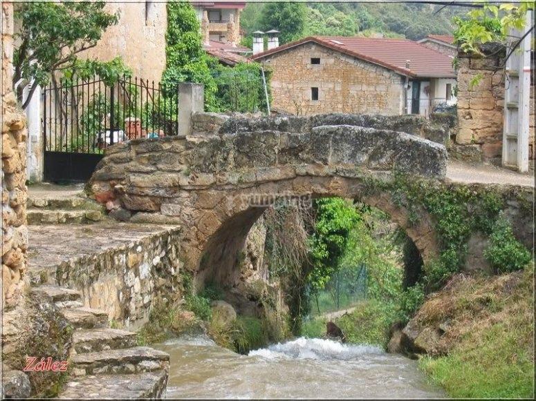 漂亮的老桥
