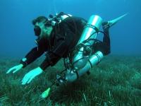 Buceador profesional en el lecho marino
