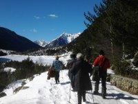 用手杖穿过雪地行走