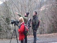 Explicacion拍摄野生动物在自然界之间农村环境的路径引导