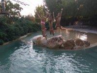 Amigas saltando al agua desde las rocas
