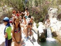 Amigos del campamento de verano