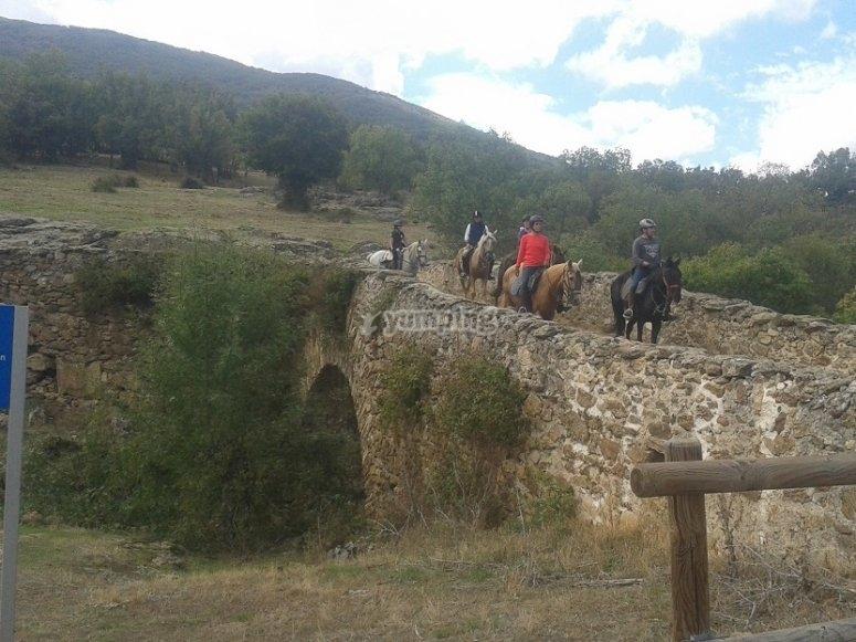 Cruzando el puente sobre los caballos