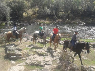 Whole Day Horse Riding + Picnic in La Cabrera
