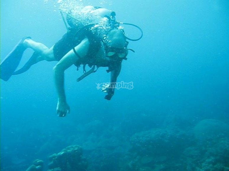 viendo en primera persona el fondo marino