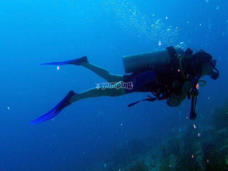 buceando en el mar