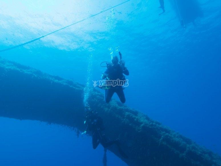 尝试在福门特拉岛潜水