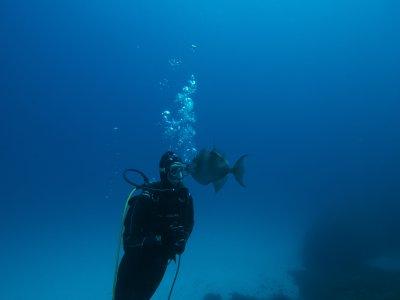 潜水与福门特拉岛的设备潜水