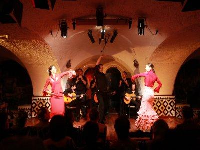 Tapas y Flamenco en Madrid