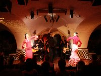 Tapas y Flamenco en Madrid