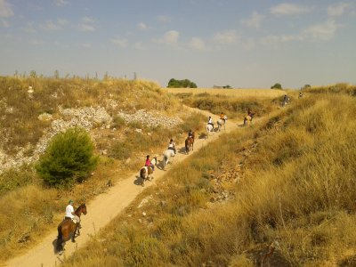 1h 30min Horse Riding Tour in Ocaña + Lunch