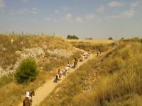 Horseback tour surroundings Ocaña 1h 30 min