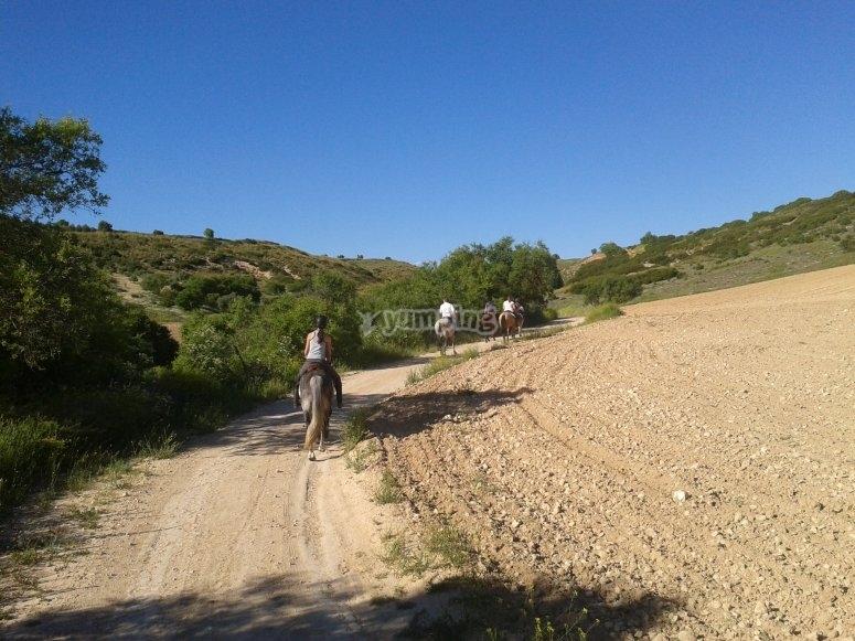 骑马穿越乡村