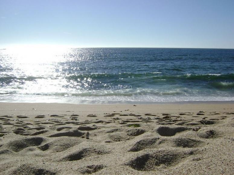 viendo la playa
