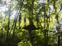 Tirolinas在Llanes的树木为孩子2h