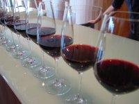 La cata de vinos