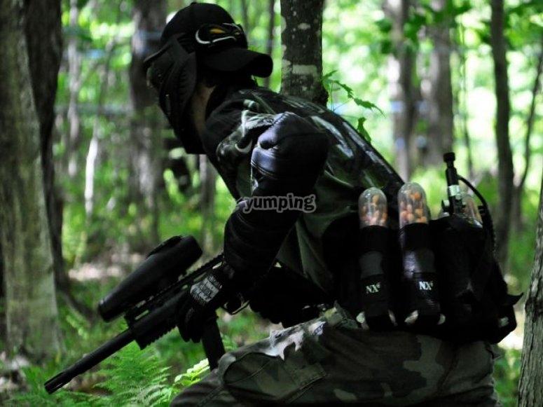 林中的激光标签