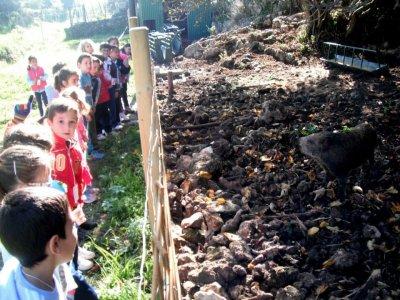 Sierra Morena的动物园野餐和游泳池