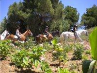 Alumnos del campamento de equitacion