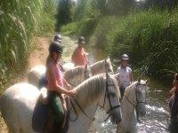 Recorrido a caballo junto al río
