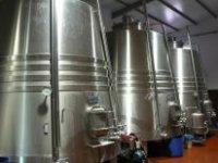 Expertos en la elaboración del vino