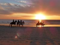 Ocaso del sol en la ruta a caballo