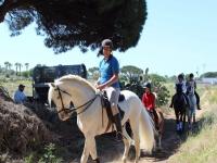 Sobre el caballo por el camino
