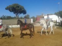 Jóvenes montando a caballo en el centro