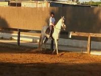 Alumnos sobre el caballo en la pista