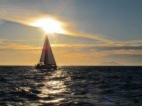 帆船钓鱼之旅