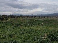 Vista de la zona sur