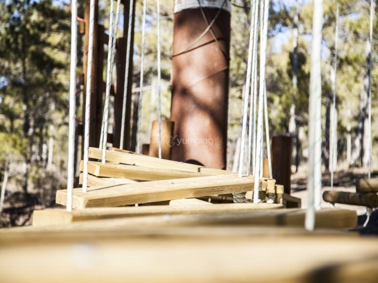 开始在桥梁的木板上行走