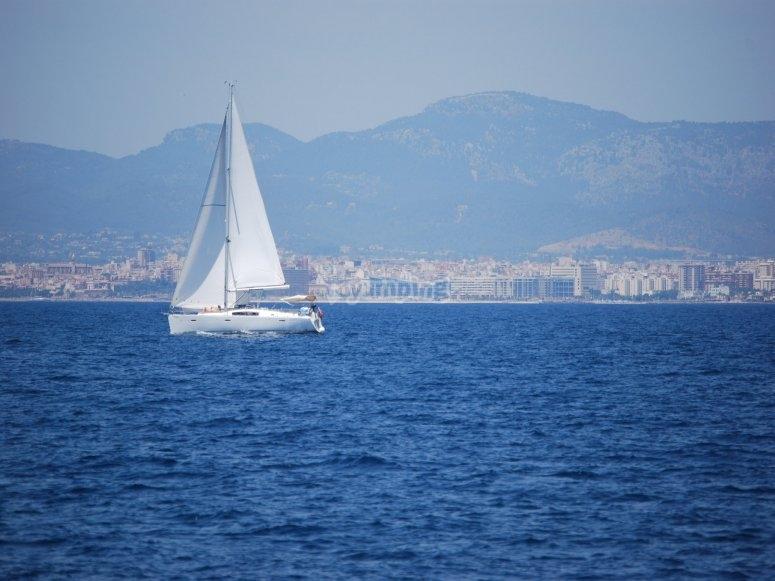 公海上的帆船