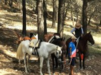 Technical stop during the crossing to horse through the Sierra de las Nieves