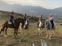 Horseback riding for small groups in Andalusian lands