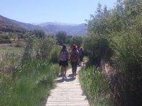 远足者在木制走道山上远足