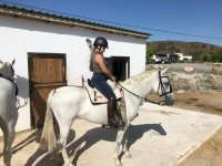 Learning to ride a horse in a Malaga horse riding center