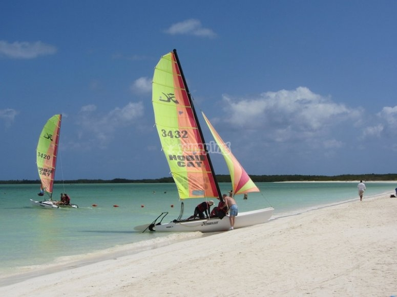 Hobie cat en la playa