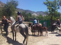 Subidas a los caballos para la ruta
