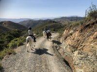 Galloping through the Sierra de las Nieves