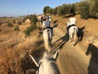 Horse riding route around Casarabonela