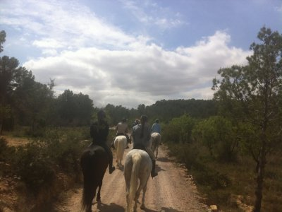 Horse riding route + Riding Lesson in Llíria