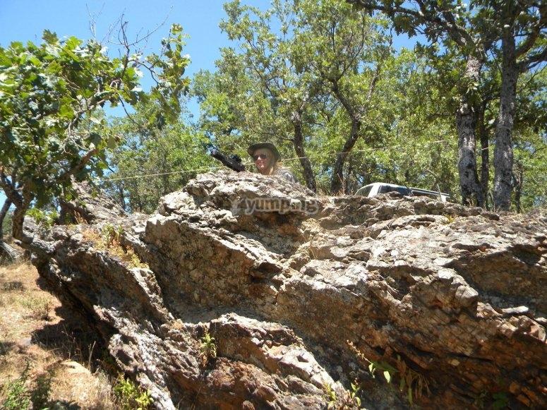 用岩石作为覆盖范围