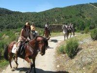 Ruta en Aracena