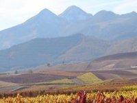 La Rioja tiene mucho que ofrecer